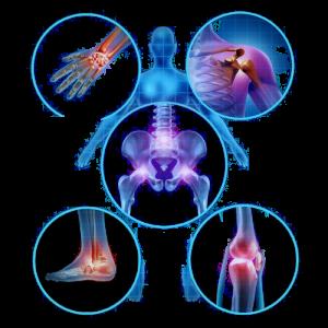 Aparato Osteoarticular
